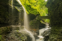 Watkins Glen in upstate New York