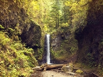 Weisendanger Falls Columbia River Gorge OR