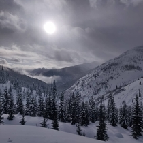 Went backcountry skiing in BC Canada last week and snapped of this beaut
