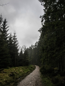 Went hiking on a very misty day with friends Scolty Woods Scotland
