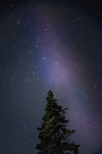 Went on a clear night to Whistler Olympic Park