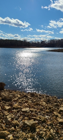 Went on a hike today Gorgeous weather for January Tennessee x