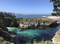 Went on my first trail run today at Point Lobos in Carmel CA