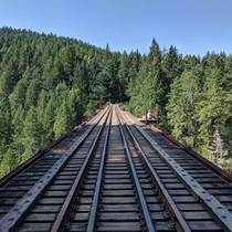 Went to an old abandoned rail bridge on Vancouver island Canada Its amazing Its roughly  meters tall and is mostly wood and metal Hasnt been used since