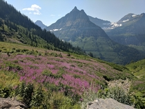 Went to Glacier National Park this weekend  x