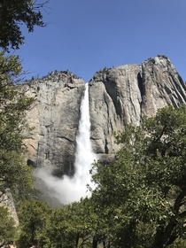 Went to Yosemite for my honeymoon Park ranger told us this is the most water that has come thru the falls in  years  x