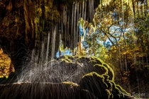 Westcave Preserve Dripping Springs Texas x OC