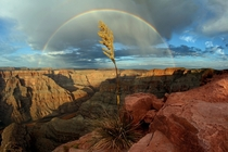 Western Rim Grand Canyon after the rain