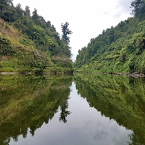Whanganui River New Zealand x