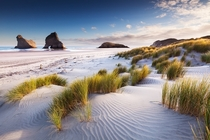 Wharariki Beach New Zealand  Photo by Sven Mller