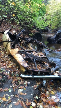 Whats left of an old car back in the woods by the park I work at