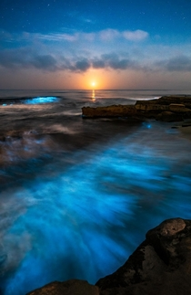 When everything glows - Bioluminescent waves crash as the Moonsets over the Pacific San Diego CA  jackfusco