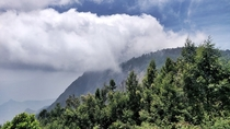 When the cloud kisses the mountain its breathtaking in Kodaikanal India  X