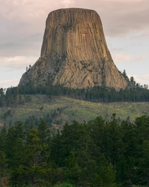 Where the bear lodges Devils Tower National Monument USA