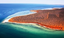 Where the red desert meets the blue ocean Shark Bay Western Australia