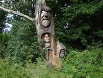 While cycling through the forest I found this old looking wood carving