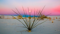 White Sands graced us with a colorful sunset -