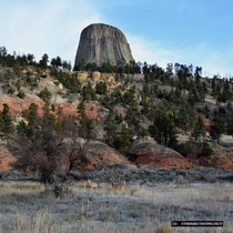 White-tailed deer in front of the unlike-anything-else Devils Tower WY during the fall
