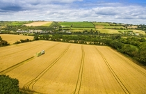Wholecrop cereal silage Inishannon Co Cork Ireland Claas  Harvester x OC
