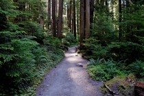 Why i absolutely love the pacific north west Sol Duc Hike Olympic National Forrest WA
