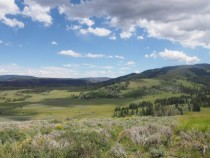 Wide Open Spaces in Yellowstone National Park