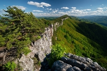 Wild cliffs in West Virginia where peregrine falcons nest