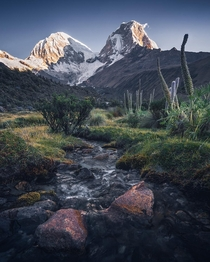 Wild flowers in bloom and across shimmering rivers while looking at the impressive mountains in the background Peru  by marcograssiphotography