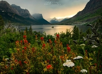 Wild goose island in all of its wildflower glory Glacier National Park
