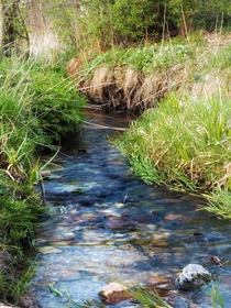 Wild stream which I always wanted to take nice picture of but never had a chance Todays walk was at last successful Southern Polands rural areas