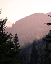 Wildfire smoke filling the valley in the Cascades of Washington