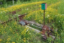 Wildflower covered railroad switch on an abandoned rail line in norther Minnesota