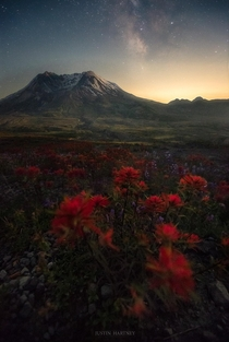 Wildflowers and the Milky Way over Mt St Helens