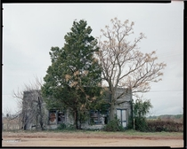 William Christenberry - Palmist Building Havana Junction AL