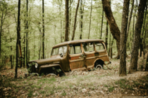 Willys Overland station wagon abandoned in a Virginia forest