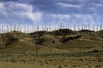 Wind farms at Tehachapi Pass Kern County CA