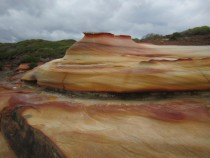 Wind-sculpted sandstone in Royal National Park Australia