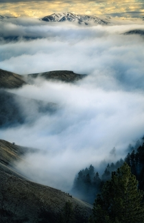 Winding Fog Blue Mountains