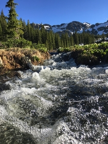 Windsor Lake Trail near Leadville Colorado Outflow stream from a pond