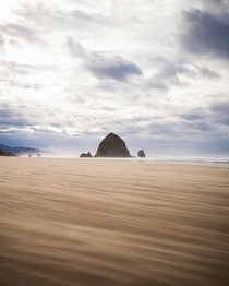 Windy day on the Oregon Coast Cannon Beach OR Ig natureprofessor