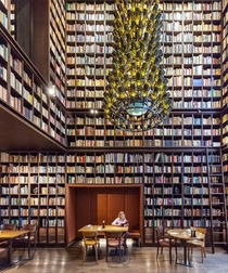 Wine library Zurich x