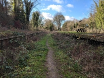 Winston Churchills Abandoned Railway and Platforms  x  OC
