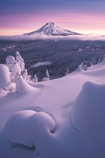 Winter Bliss near Mt Hood OR