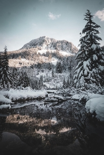 Winter Im WA state