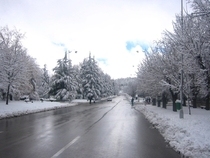 Winter in Ifrane Morocco
