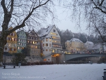 Winter in Tbingen  by Tania Nique