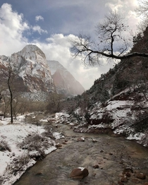 Winter is a great time to visit the National Parks Very few people and insanely beautiful Took this photo at Zion National Park in Utah a couple days ago