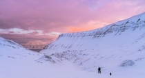 Winter is going Pink skies over Larsbreen Glacier marking the end of the Dark Winter in Svalbard Norway OC