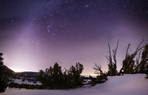 Winter Night Sky over The Mt Rose  Sheep Flat meadow last night with Carson down to the left and Lake Tahoe peaking through the branches center-right One of the most technically challenging photos Ive ever taken