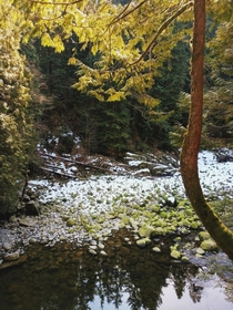 Winter slowly receding on the Capilano River