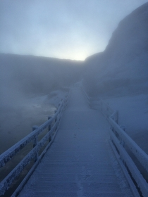 Winter steam rising over the boardwalk at dawn near Mammoth Yellowstone National Park